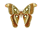 butterfly-1525811_1920.png