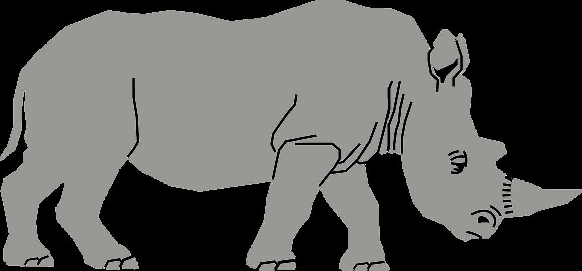 Rhino.png