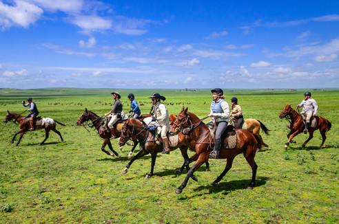 serengeti-migration-feb-2020-equus-journ
