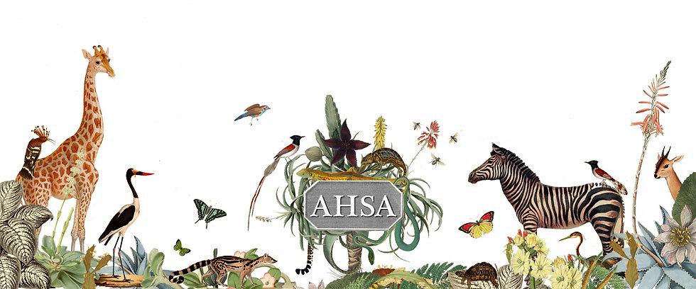 ABSA Website Bottom Banner.jpg