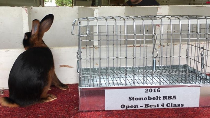 Best in Show - Franklin, IN - 9/18/16