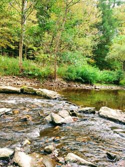 creekside 1