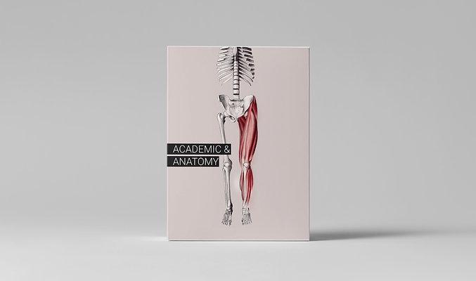 Рассрочка Academic & Anatomy