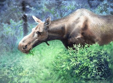 Mama Moose.jpg