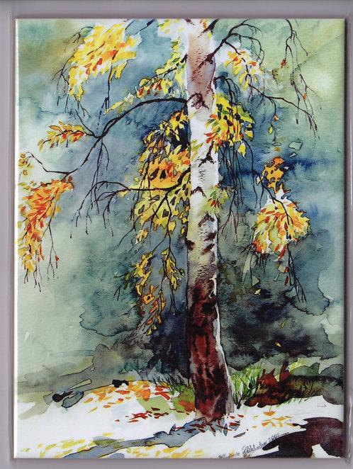 "#5 BIRCH TREE, 6""x8"" Sublimation ceramic tile/trivet"