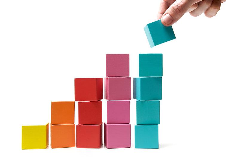 BF Building Blocks.jpg
