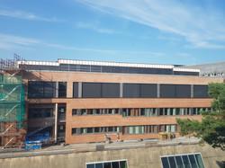 Universitetet i Agder