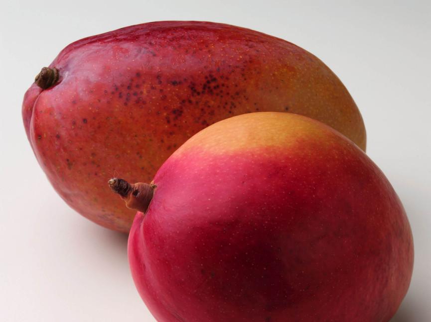 Vruchten 15
