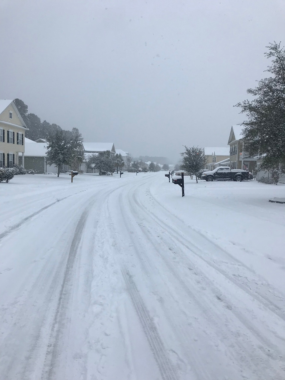 First snow in Winter 2018