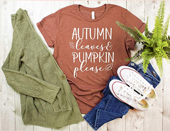 autumn leaves and pumpkin please tshirt