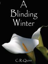 Blinding Winter for Wix.jpg