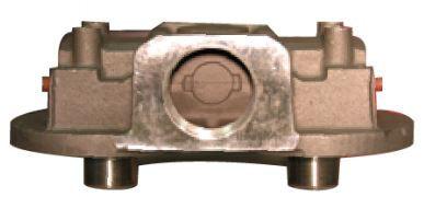 50028.JPG