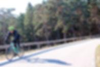 Ruta Templarios carretera