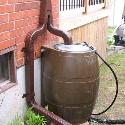 Rain Barrel Downpout Disconnection