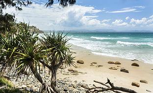 Tropical-beach-000096916701_XXXLarge.jpg