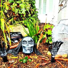 Halloween at the Village Garden Cattery