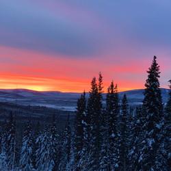 Sunrise Tok Alaska