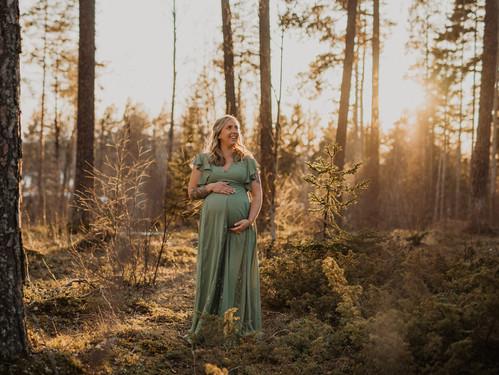 Gravidfotografering på Frösön i solnedgången