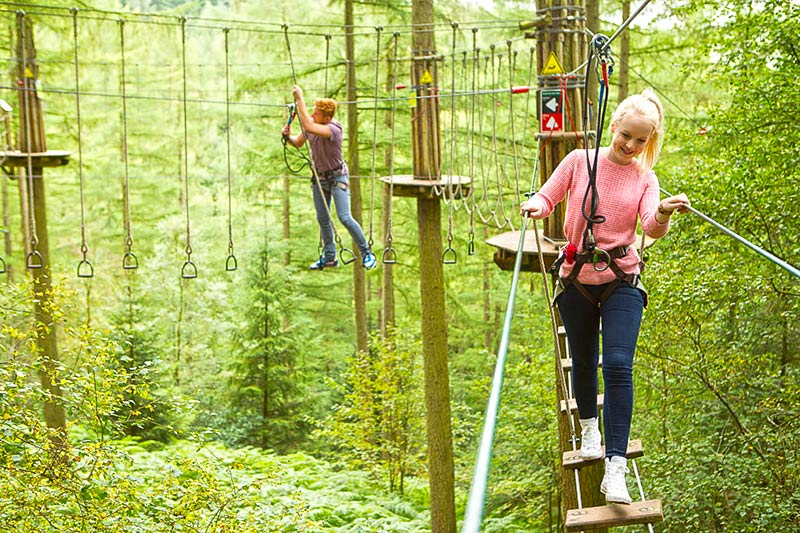 Go Ape Dalby Forest - 15 minutes