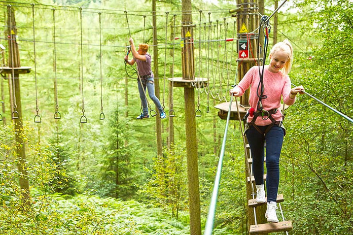 Go Ape Dalby Forest