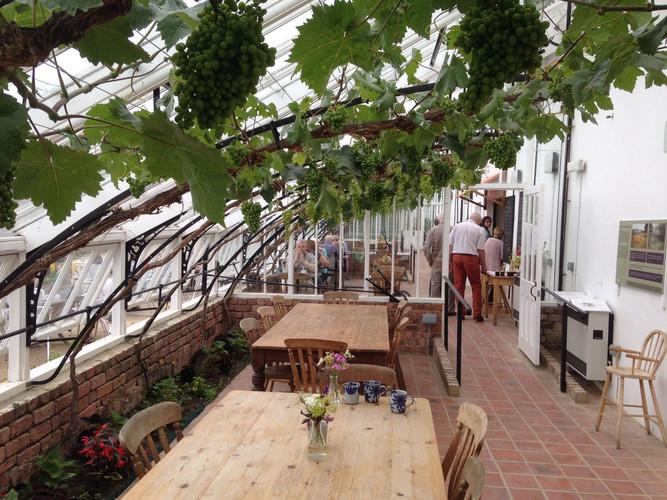 Vinehouse Cafe