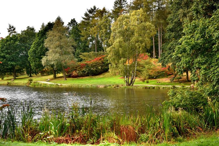 Yorkshire Arboretum
