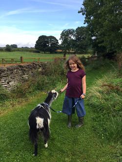 Elsie Pygmy Goat Walk