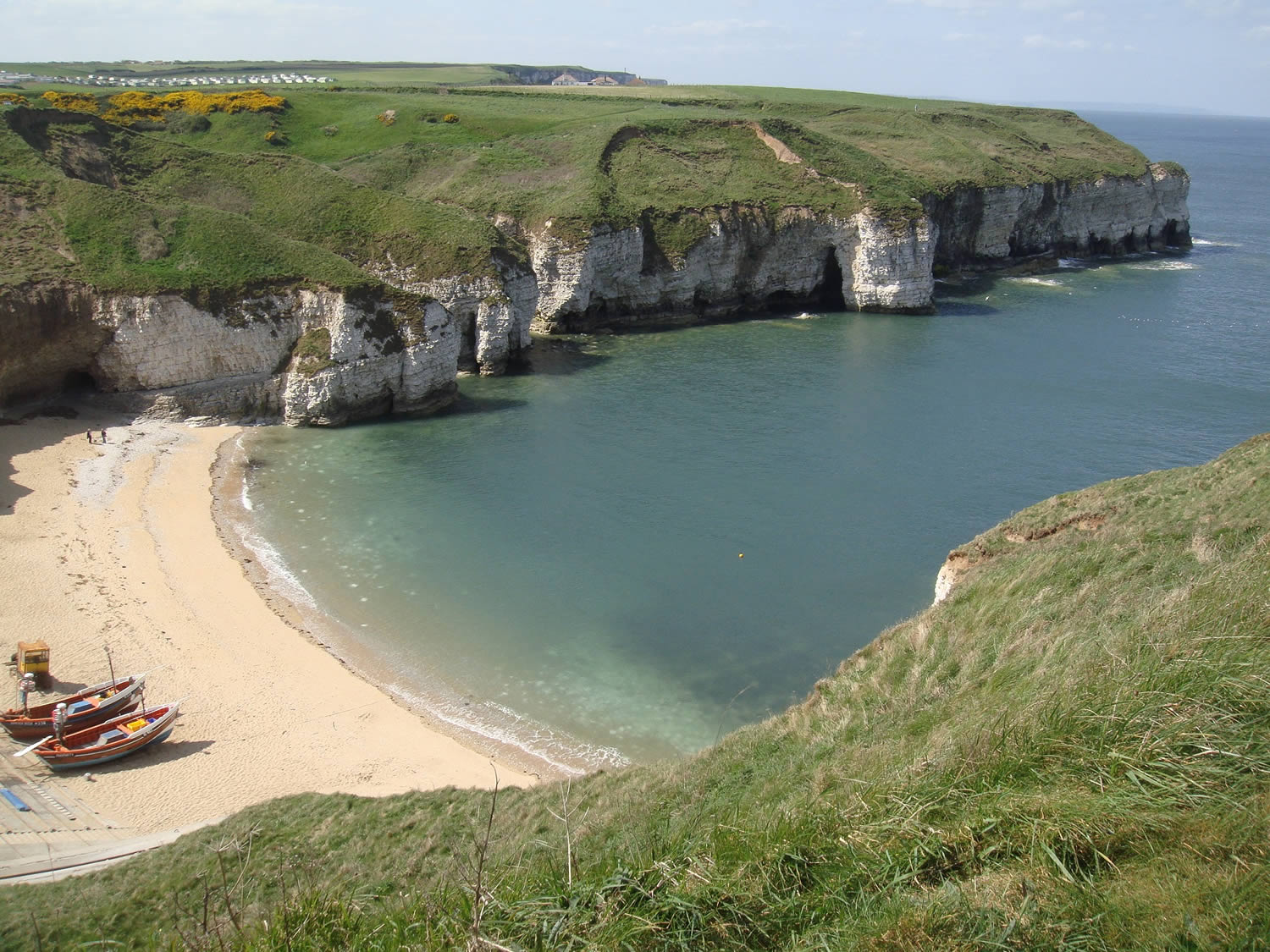 Flamborough Cliffs - 1 hour
