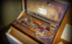 Pushkin www.sanchara.lk