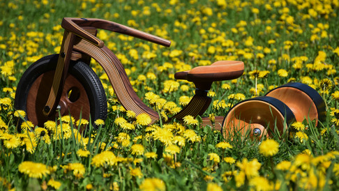 The wooden tricycle by Etienne Franzak