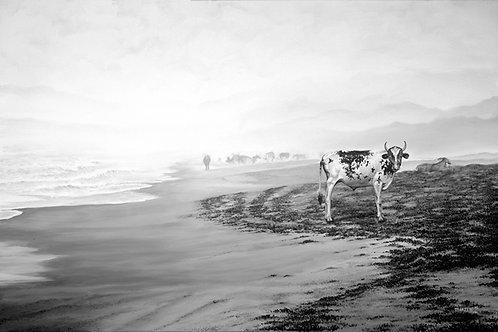 COW ON THE BEACH