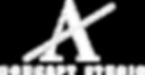 200107 A Concept Studio WHITE Logo Illus