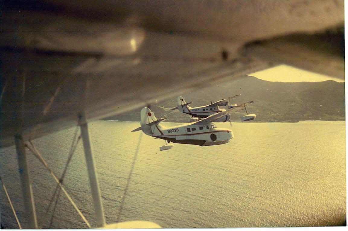 4 Goose Fly-By STX