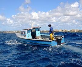 1200px-Line_Fishing_on_Cobblers_Reef.jpg