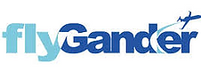 fly gander logo_edited.png