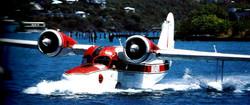 N1048V Goose