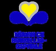 bxl-region-logo.png.jpg.png