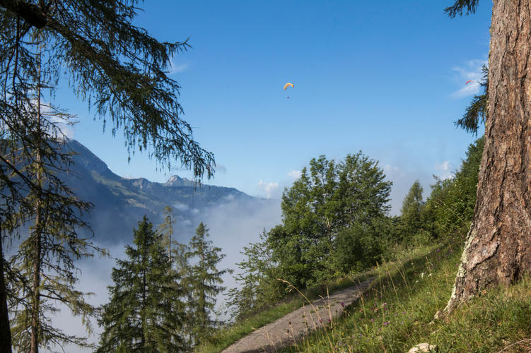 Parasailing in the Alps