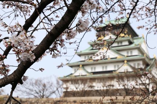 Osaka Palace