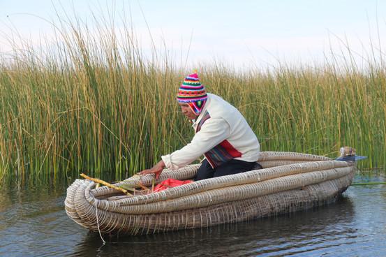 Gathering of reeds