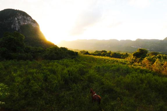 Sunset Horseride