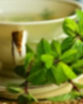 Tea_cover.png