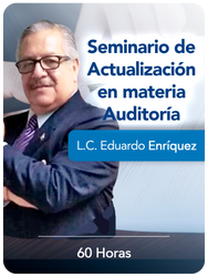 Seminario Auditoría