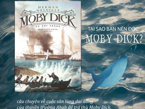 Tại sao bạn nên đọc Moby Dick - Cá Voi Trắng?