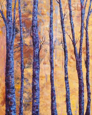 The Lightness Of Trees