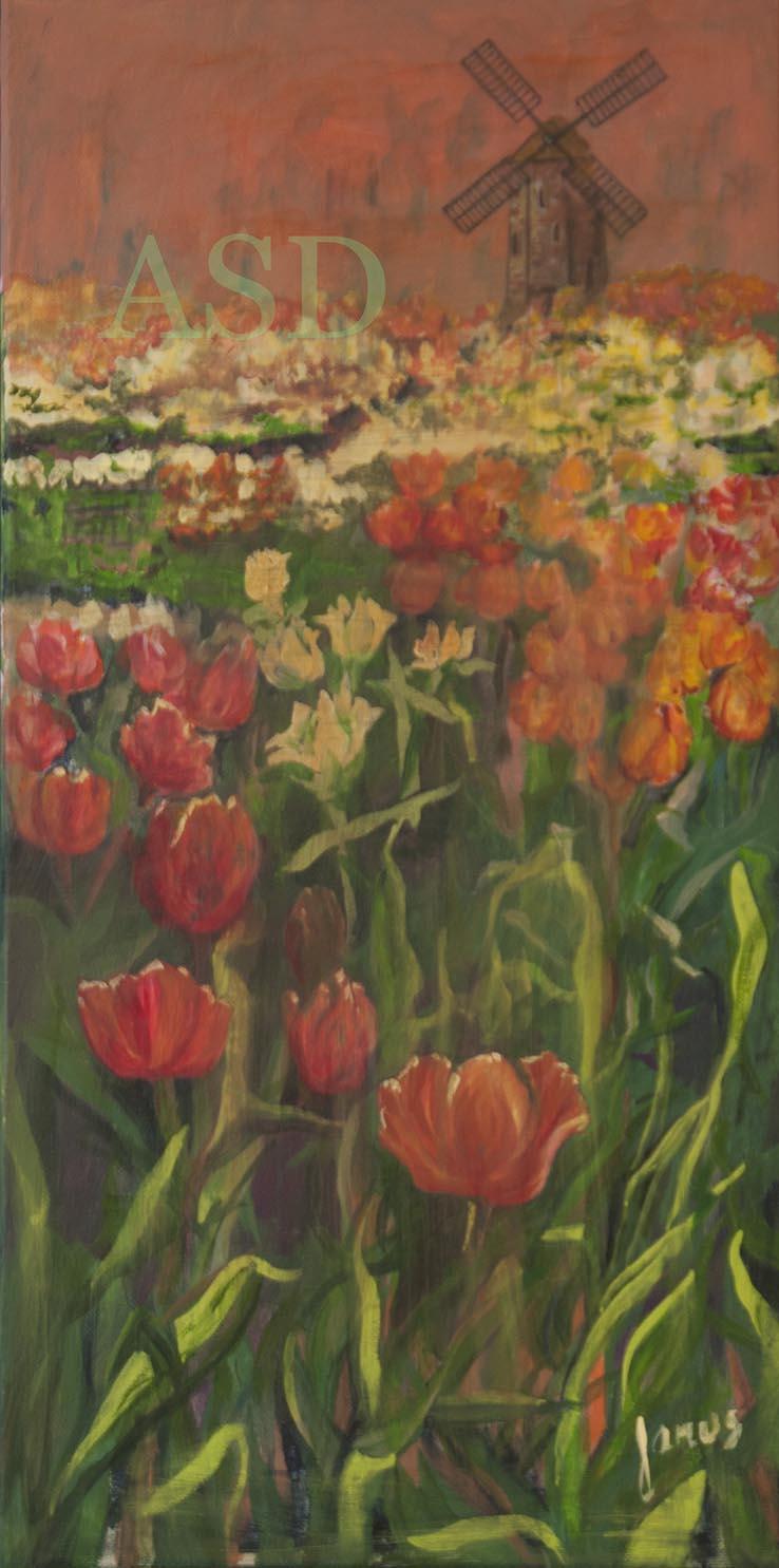 Tulip Valley