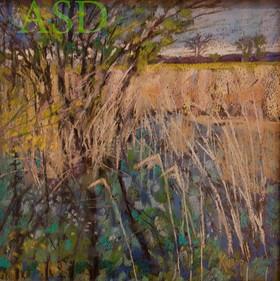Erie Marsh