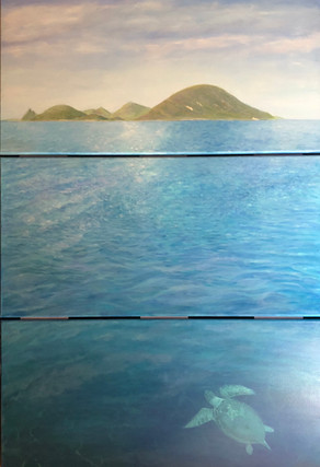 """Aegean Sea Turtle"" by Theresa Lannen"