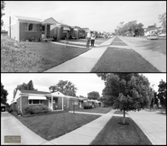 Homestead, 1963-2020