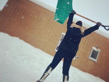 今年も雪が...
